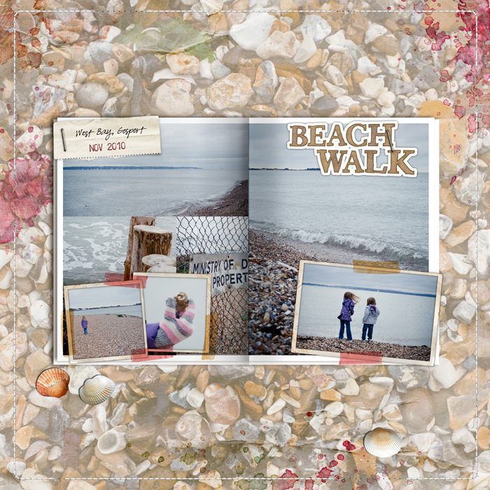 Beachwalkweb