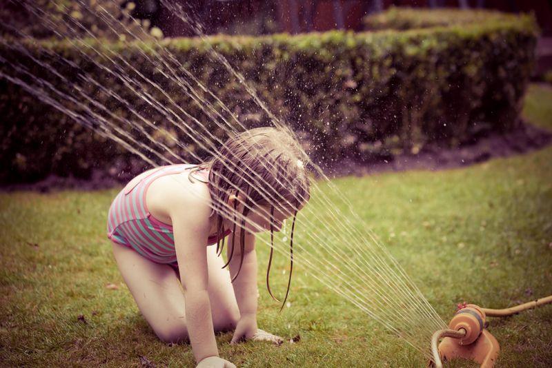 Daisysprinklerweb