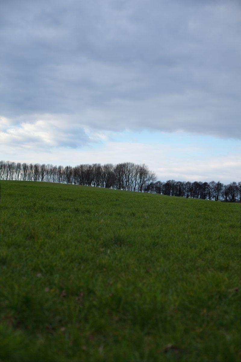 Deerhillweb