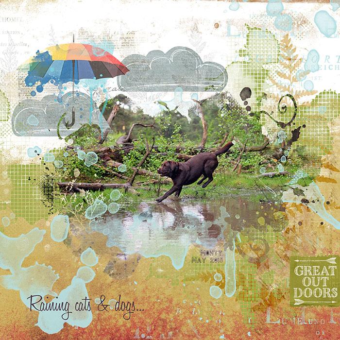 Rainingcatsanddogsweb