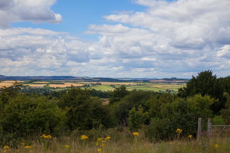 Stockbridge view