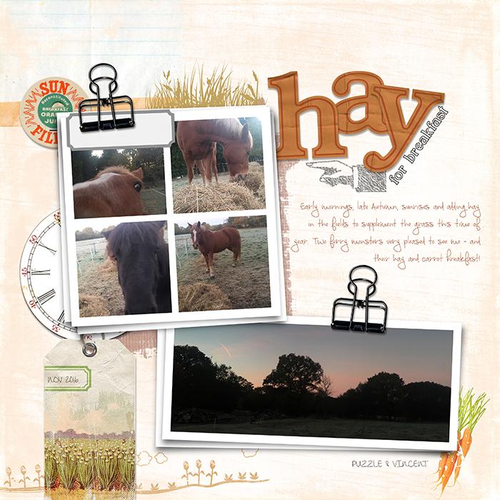 Hayforbreakfastweb