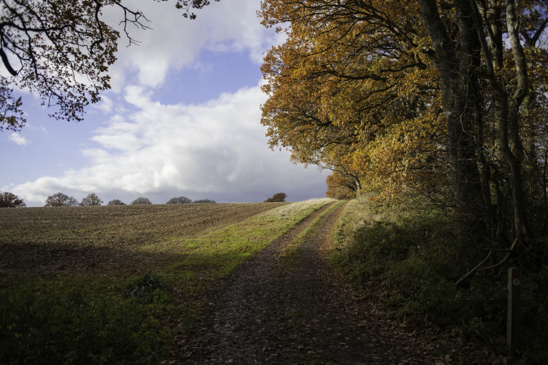 Spearywellhill