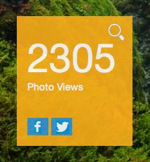 Screen Shot 2015-09-04 at 20.42.17
