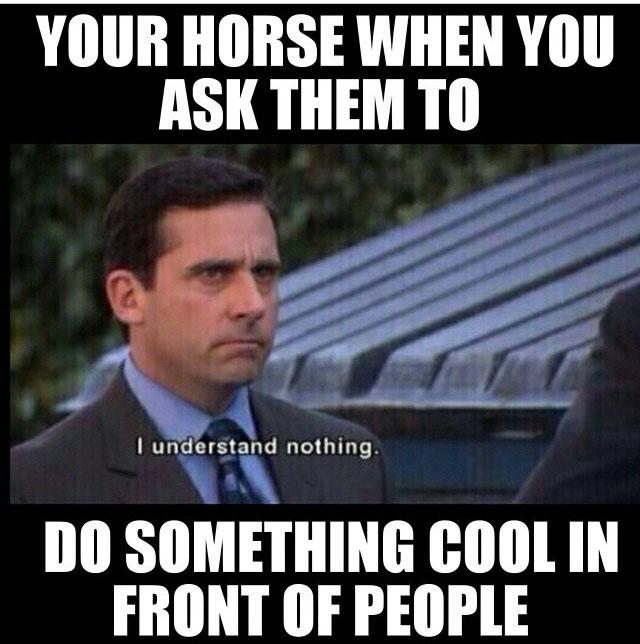 Horsememe