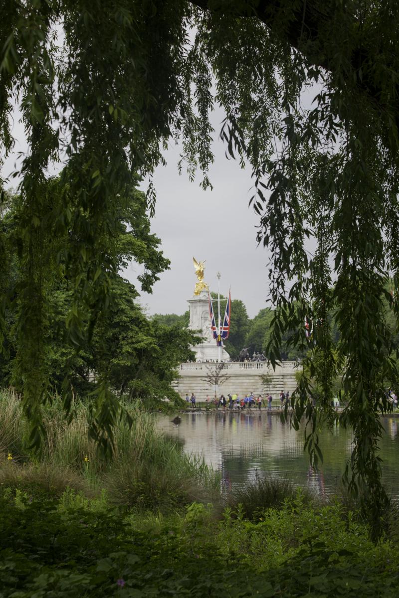 Palace viewlake