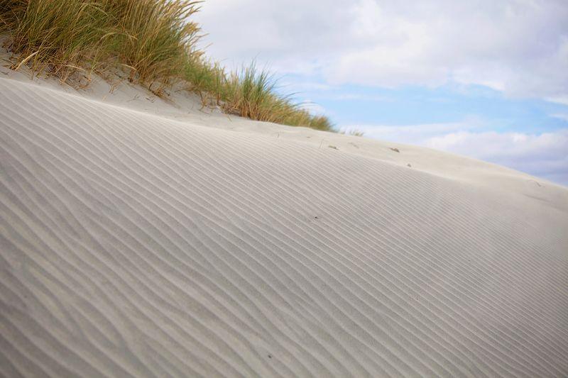 Dunesweb