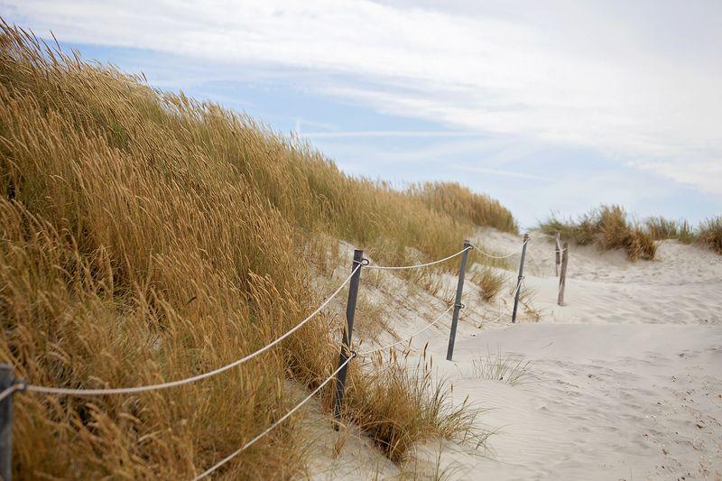 Dunes2web