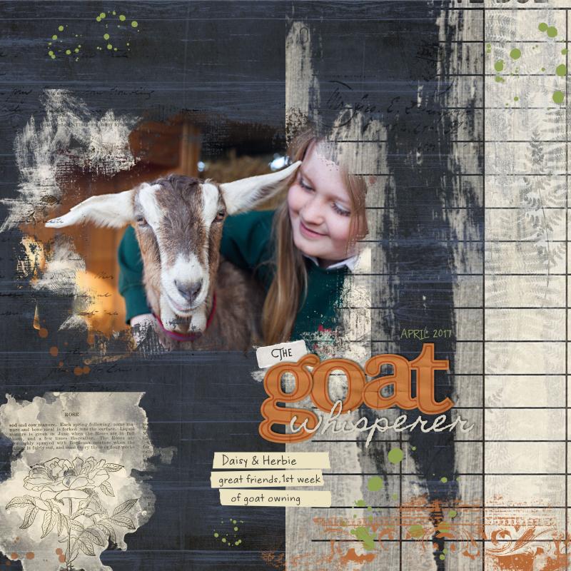 Goatwhisperer