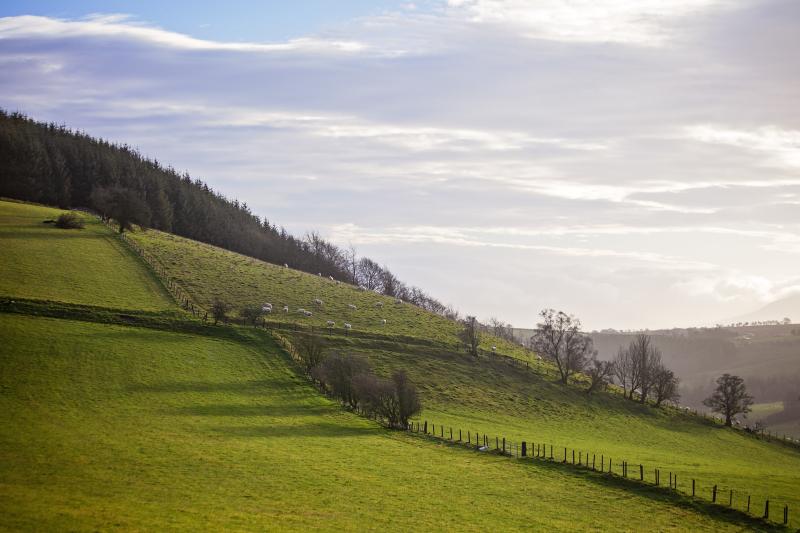 Highonahill