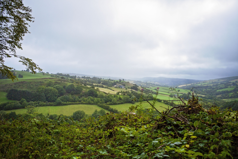 Rainyvalley