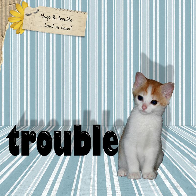 Hugo_troubleweb